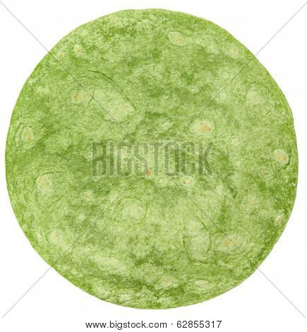 Open Flat Spinach Wrap Isolated Over White