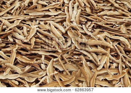 Dried Lingzhi Mushroom