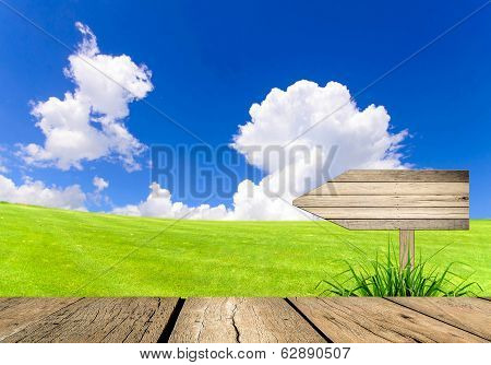 Arrow Sign Wooden Board Andlandscape Of Green Field With Blue Sky,future Way Concept