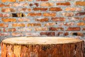 Pine Stump Background Brick Wall