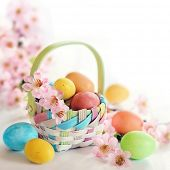 Colorful Easter eggs and pink spring flowers in a basket on white background