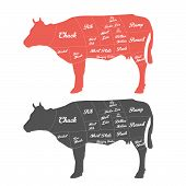 Illustration of Beef Cuts Chart (cow)