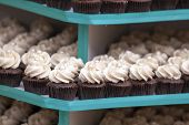 stock photo of icing  - Trays of Chocolate Cupcakes with Icing Dessert Closeup