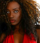 picture of nigeria  - Beautiful Image of a Afro American Glamour Model - JPG