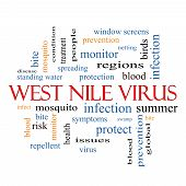 image of mosquito repellent  - West Nile Virus Word Cloud Concept with great terms such as mosquito bite infection and more - JPG