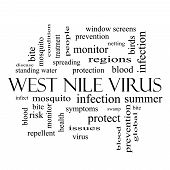 picture of mosquito repellent  - West Nile Virus Word Cloud Concept in black and white with great terms such as mosquito bite infection and more - JPG