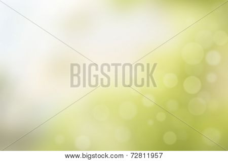 Abstract blurry green background