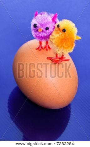 Chicks On An Egg
