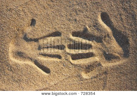 Two Handprints In The Sand