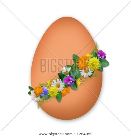 Easter Decorated Egg With Flowers And Plants On The White Background