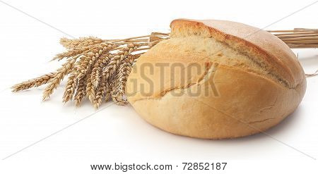 Round Bread And Wheat