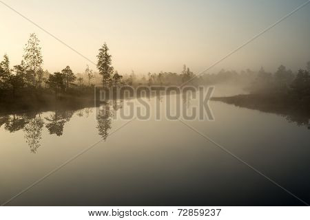 Beautiful Tranquil Landscape Of Misty Swamp Lake