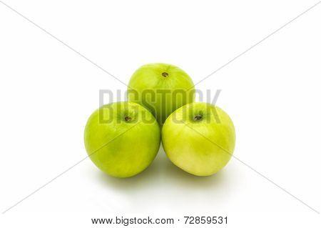 Green Fresh Ziziphus Mauritiana, Jujube, Chinese Apple.