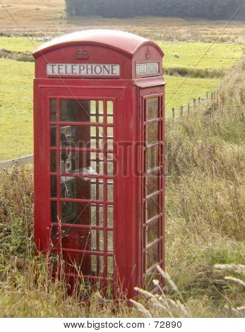 Phone Booth In Paddock