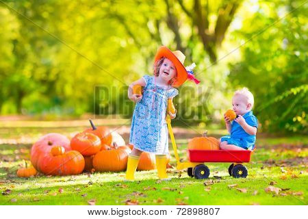 Adorable Kids At Pumpkin Patch