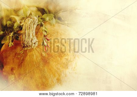 Background texture with a pumpkin and herbs - Still life composition - seasonal vegetables of autumn