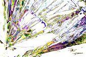 pic of psychodelic  - Microcrystals of tartaric acid in polarized light - JPG