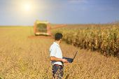 image of soybeans  - Young landowner with laptop supervising soybean harvesting work - JPG