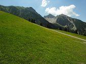 Alpine Summer View poster