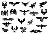 stock photo of eagle  - Heraldic black eagles - JPG