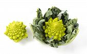 picture of romanesco  - Romanesco on white with and without leaves - JPG