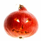 image of jack-o-laterns-jack-o-latern  - a small Jack - JPG