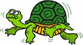 foto of carapace  - Green turtle with prominent carapace while walking in a dubious way - JPG
