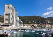 picture of gibraltar  - A selection of luxury yachts in the marina at Gibraltars Ocean Village - JPG