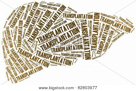 Liver Transplantation. Word Cloud Illustration.
