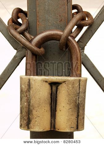 The lock with a chain on metal gate on the white.