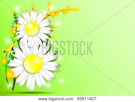 Holiday Greeting Card With Mimosa And Shape Of 8 From Daisies On International Women's Day