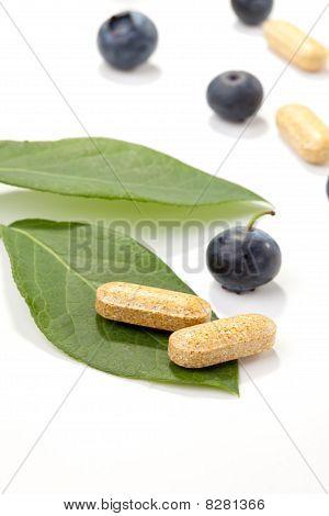 Bilberry Pills And Berries
