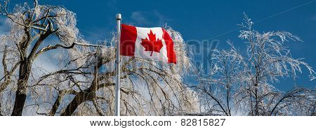 Ice Covered Trees Behind A Canadian Flag - Banner