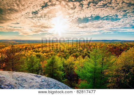 Sunlight Over The Treetops In An Autumn Forest