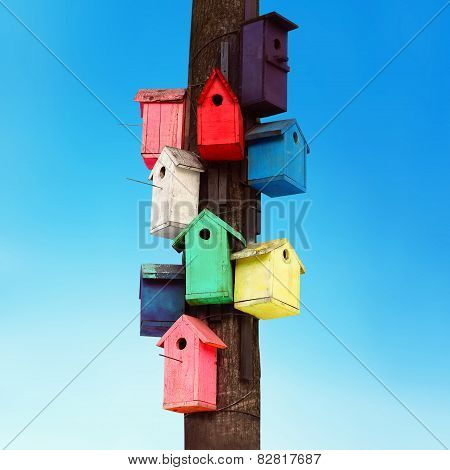 Lots Of Colorful Wooden Birdhouses On A Tree Against Summer Blue Sky