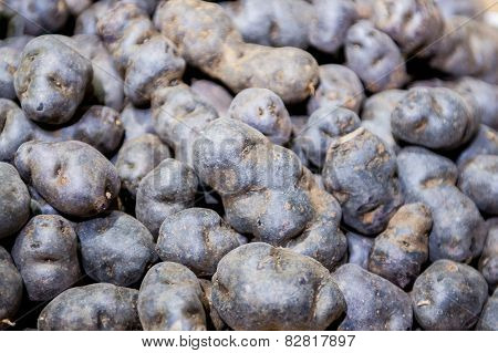 Heap Of Purple Potatoes Close Up