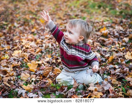 Boy Sits In Leaves With His Hand Up Waving