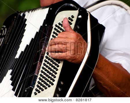 Accordeon Player