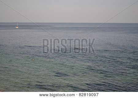 Black sea waters