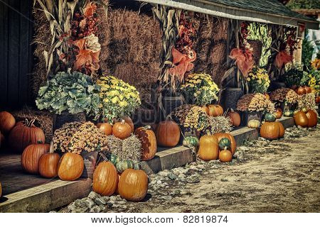 Autumn Theme Display - Retro
