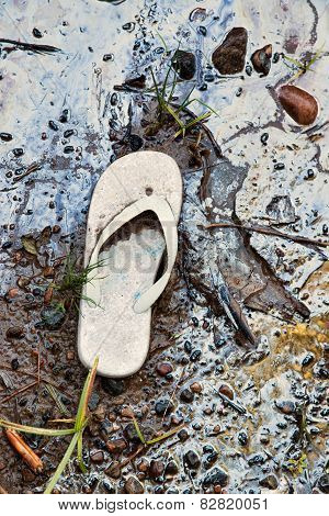 Abandoned Sandal On A Toxic Beach