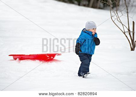Young Boy Pulling A Sled In The Snow