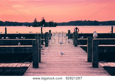 Seagulls On The Pier At Sunset