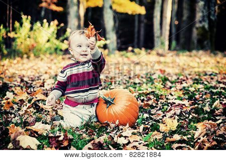 Boy Beside Pumpkin Holding Up Leaves - Vintage
