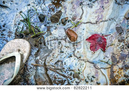 Sandal And Red Maple Leaf On A Toxic Beach