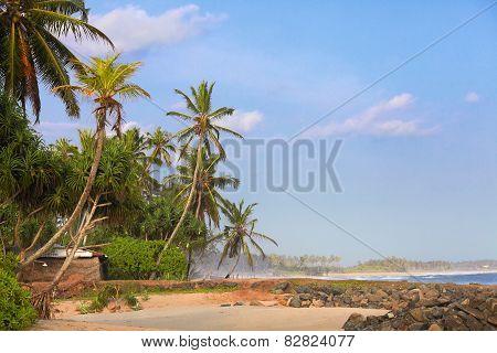 Hut on the shore
