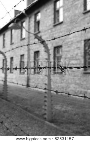 Barbed Wire at Auschwitz