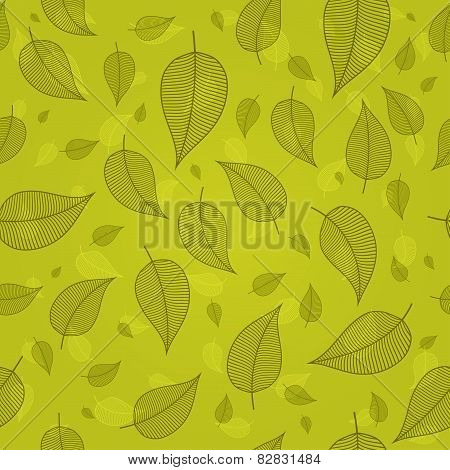 Skeletonized Leaves On A Green Background Vector