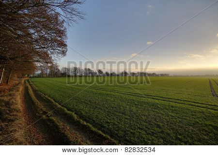 Landscape And Rising Storm