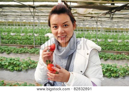 Asian Beautiful Tourist Woman Wearing Overcoat In Strawberry Greenhouse, Harvest, Fresh